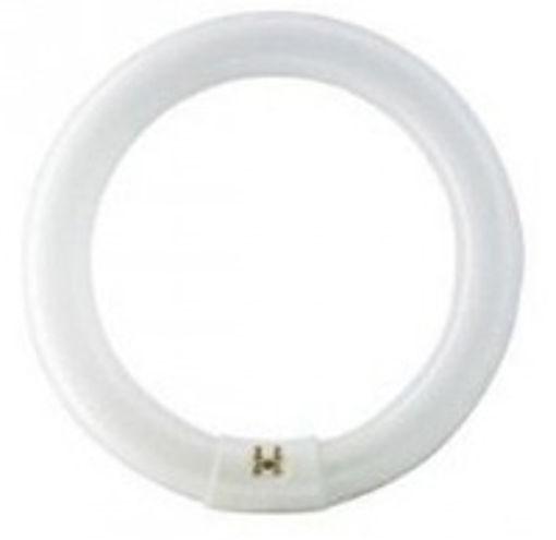 Λάμπα φθορίου Κυκλική Τ9 32W 6400K-900941